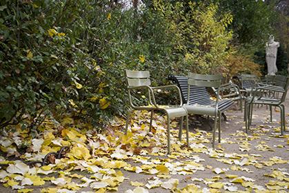 Les chaises sont délaissées et s'enfoncent dans un tapis de feuilles qui s'épaissit.
