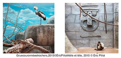 "Photos d'Eric Pillot ""in situ -Etats-Unis""."