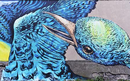 Les oiseaux de Bastardilla.