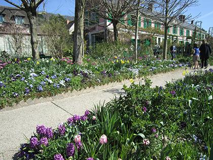 Le jardin de Monet aux premiers jours du printemps